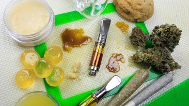 Photo of Little Useful Information about Marijuana Edibles