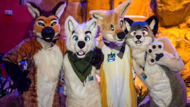 Photo of Interesting Things to Know about Furries