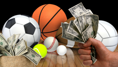Photo of Best sport to bet on to make money