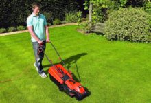 Photo of Local lawn care services